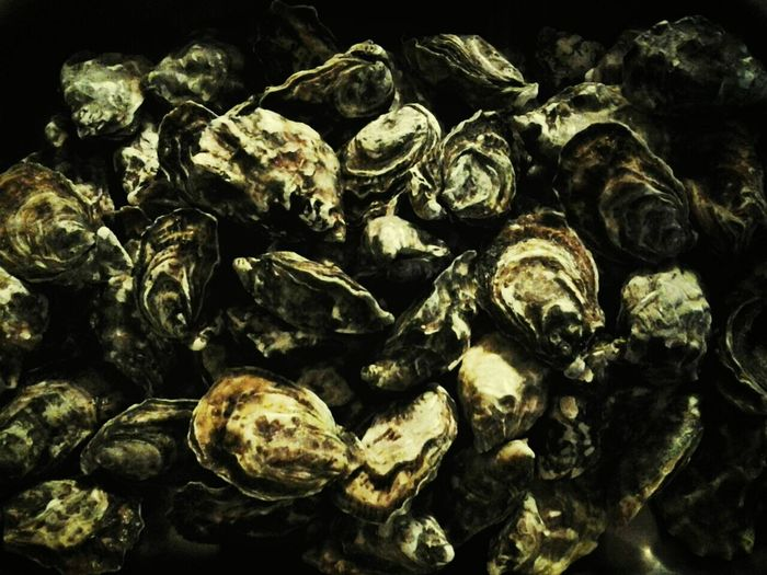 Sea Food Ostriche Oysters