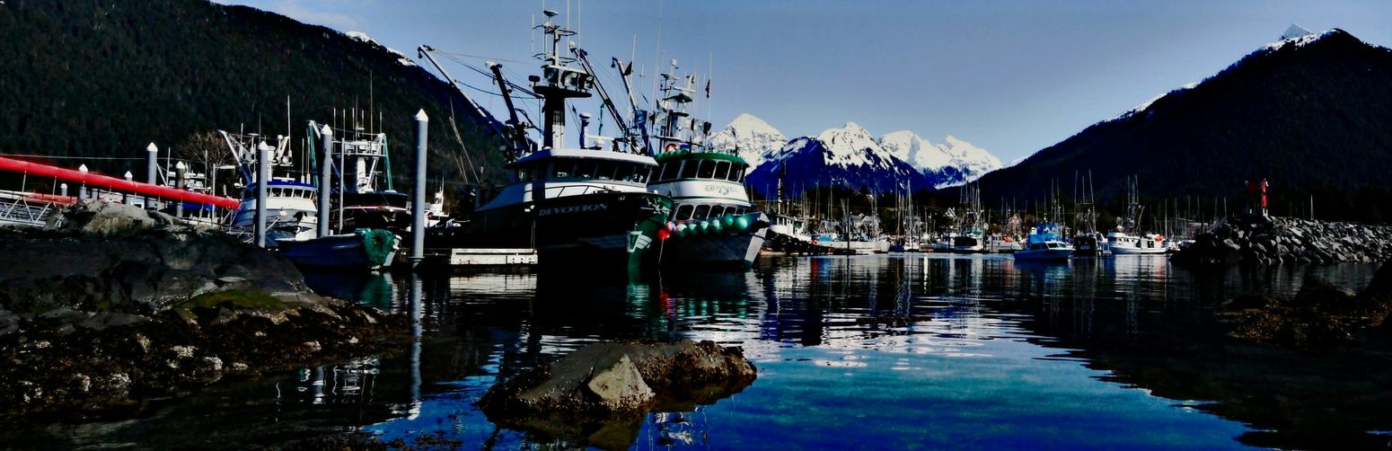 Crescent Harbor with the Herring fleet starting to raft up here in Sitka... SitkaAlaska