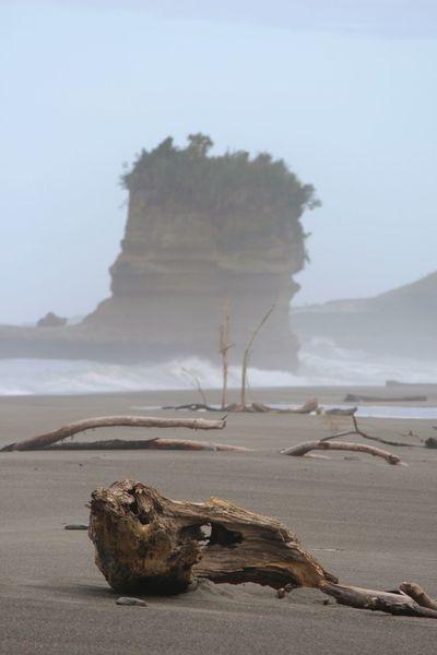 Driftwood on Punakaiki beach Punakaiki Beach Beachphotography Beachwalk Driftwood Ocean Oceanside Evening Rock Formation Rock