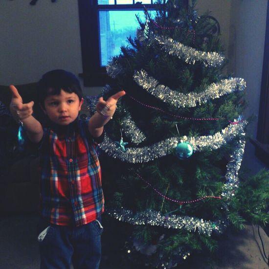 Tree Christmas Christmas Tree