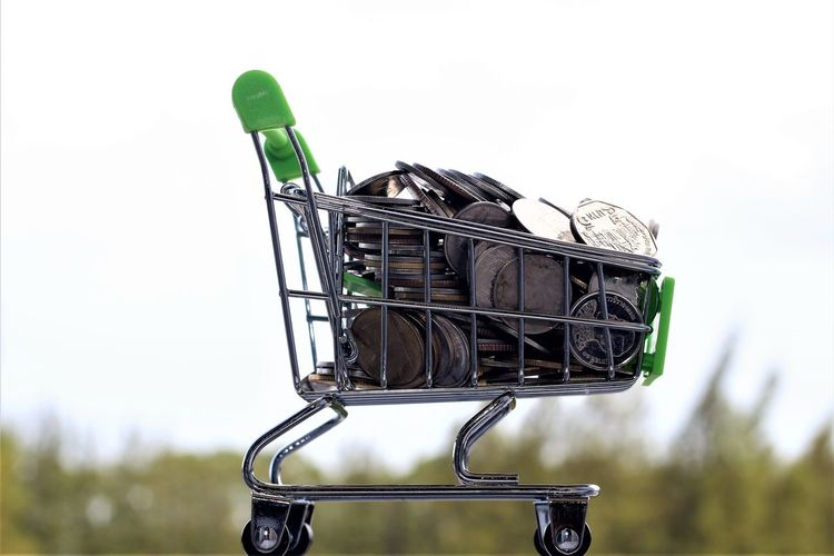 shopping cart Shopping Cart Bicycle Bicycle Basket Business Clear Sky Close-up Coins Consumerism Copy Space Day Focus On Foreground Green Color Land Vehicle Low Angle View Metal Monkey Nature No People Outdoors Plant Shopping Cart Sky Technology Transportation