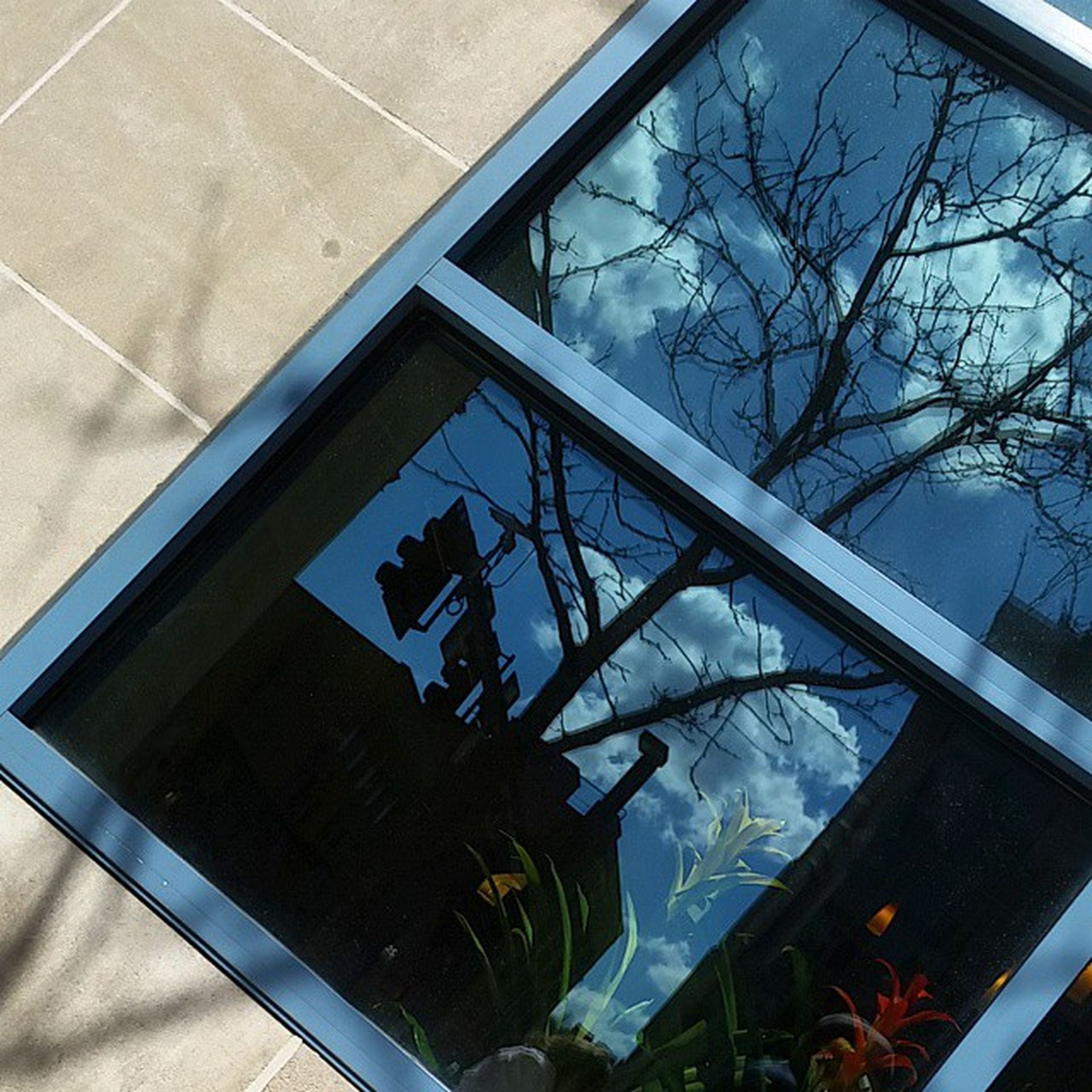 glass - material, window, indoors, transparent, reflection, glass, architecture, built structure, low angle view, day, sky, high angle view, no people, building exterior, blue, tree, sunlight, cloud - sky, building, geometric shape