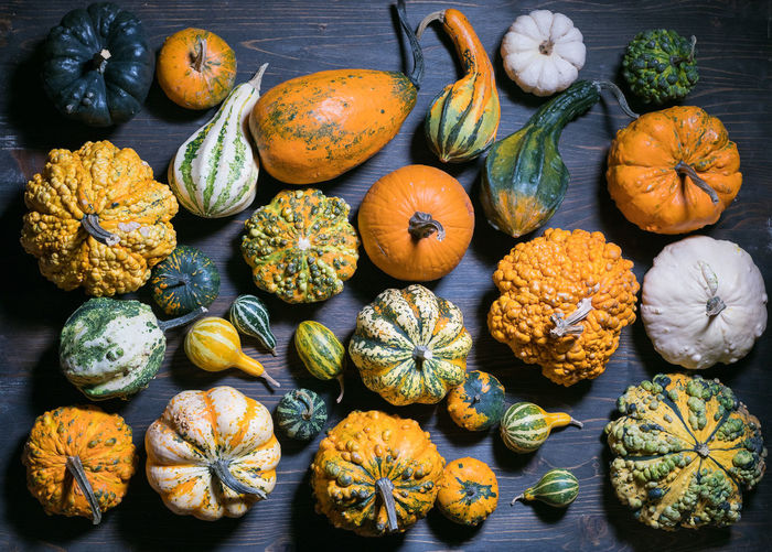 High angle view of pumpkins for sale on table