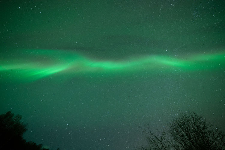Aurora Borealis in Norway Geomagnetic Disturbance Kp-index Northern Lights Polar Lights Astronomy Aurora Polaris Beauty In Nature Galaxy Geomagnetic Storm Green Color Idyllic Low Angle View Majestic Nature Night Outdoors Plant Scenics - Nature Sky Space Star - Space Tranquil Scene Tranquility Tree Zulkefli