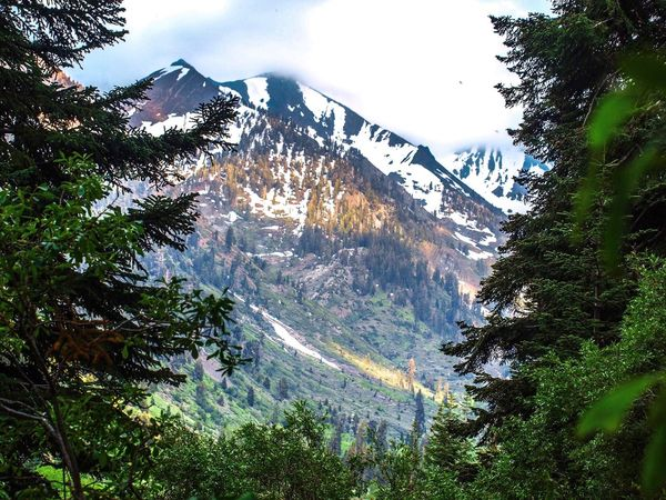 Gods Country Mountain Nature Nature On Your Doorstep Nature Photography Meditation Window God Tree Low Angle View Day Water Outdoors No People Nature Sky Mountain Beauty In Nature