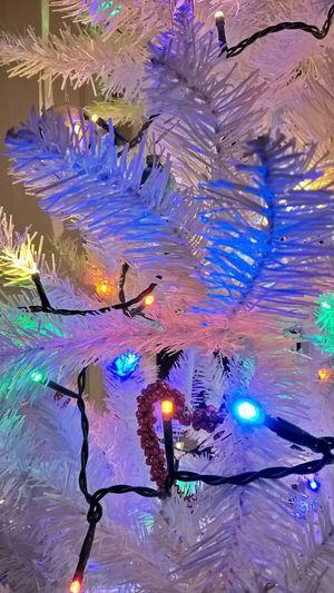 Showcase: December White Christmas Tree Holidays
