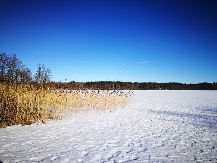 Outdoors Nature Blue Day No People Clear Sky Sky Landscape Snow Beauty In Nature Frozen Lake