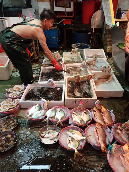 Local market vibes... Choice Fish Market Fish Monger Fishes Food For Sale Freshness Hong Kong Market Occupation Raw Raw Fish Raw Food Real People Retail  Seafood Shau Kei Wan SHELLFISH  Variation Working Neighborhood Map The Street Photographer - 2017 EyeEm Awards Live Fish