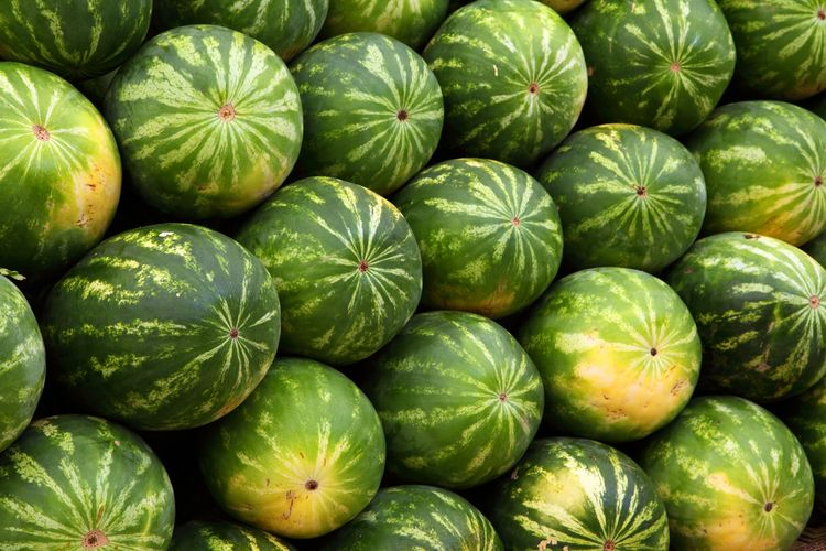 Abundance Backgrounds Close-up Day Food Food And Drink Freshness Fruit Full Frame Green Color Healthy Eating High Angle View Large Group Of Objects Market No People Organic Retail  Ripe Vegetable Watermelon Wellbeing
