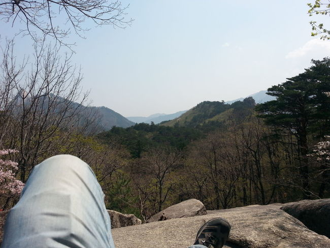 NatureReserve Sunny Bare Tree Beauty In Nature Chillin' Day Leisure Activity Mountain Mountains Nature Outdoors Relaxation Soraksan Southkorea
