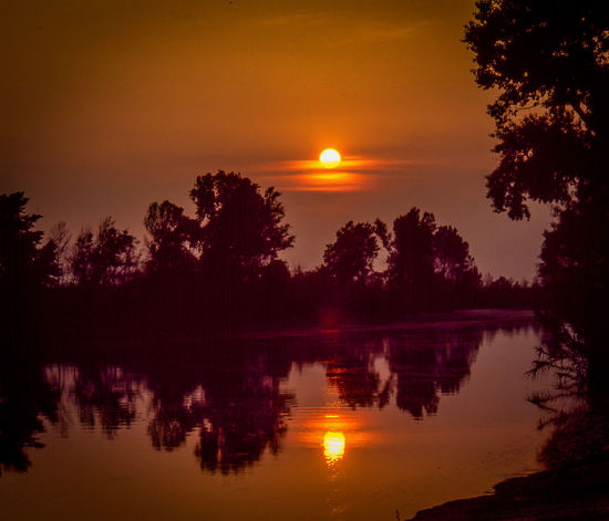 Sunset on the river Beauty In Nature Film Photography Idyllic No People Non-urban Scene Orange Color Outdoors Plant Reflection Reflection Lake River Scenics - Nature Silhouette Sky Sun Sunset Tranquil Scene Tranquility Tree Water Waterfront