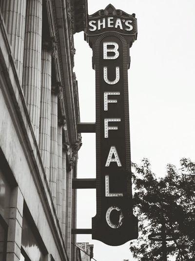 Buffalo Buffalo Buffalo,ny Check This Out Taking Photos Hanging Out Enjoying Life Relaxing USAtrip Amerika America USA Blackandwhite