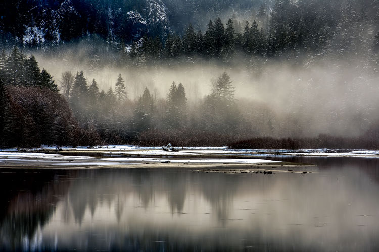 Fog closing in on the lake on a snowy afternoon. Some sunlight making it through the clouds to light up the fog. Lake Diablo, Washington State Foggy Weather Winterscapes Wintertime Beauty In Nature Cold Temperature Day Fog Fog In The Trees Lake Nature No People Outdoors Reflection Reflections In The Water Scenics Sky Snow Snow Covered Tranquil Scene Tranquility Tree Water Winter