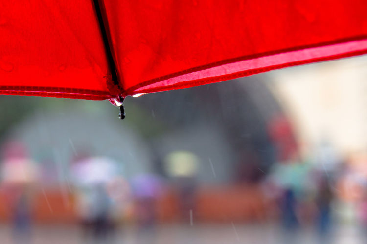 Close-up Day Focus On Foreground Part Of Red Red Color Umbrella Vibrant Color Water