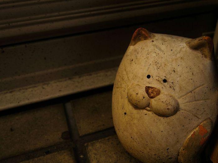 Old Retro Pentax Back Alley Miyazaki Japan Ornament Animal Ornament Cat