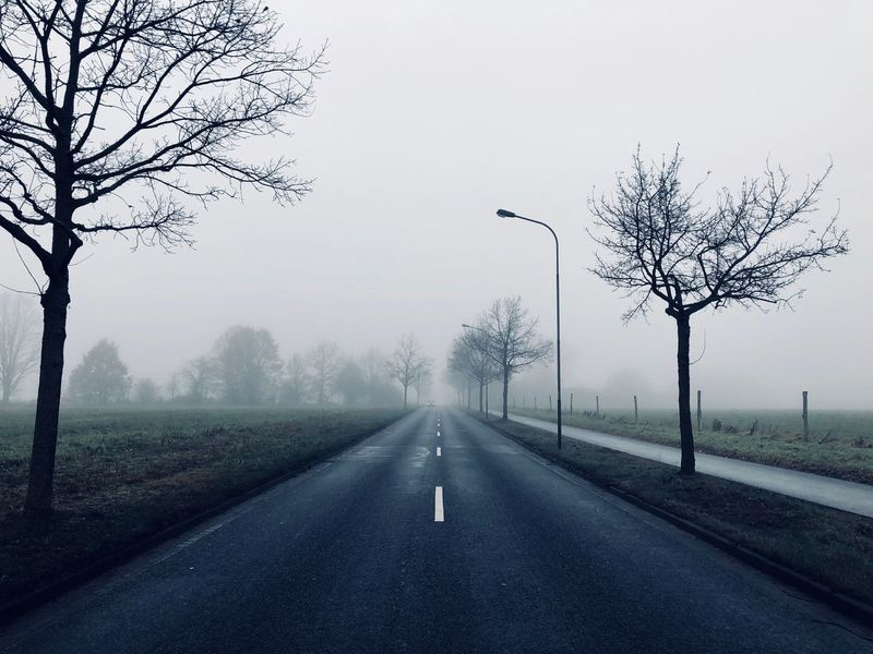 Winter Landscape Road The Way Forward Fog Bare Tree Foggy Foggy Weather Foggy Landscape Country Road Misty In The Middle Of Nowhere Spooky Atmosphere Trees Asphalt Blueish Loneliness Quiet Moment Silence Silent Moment Germany