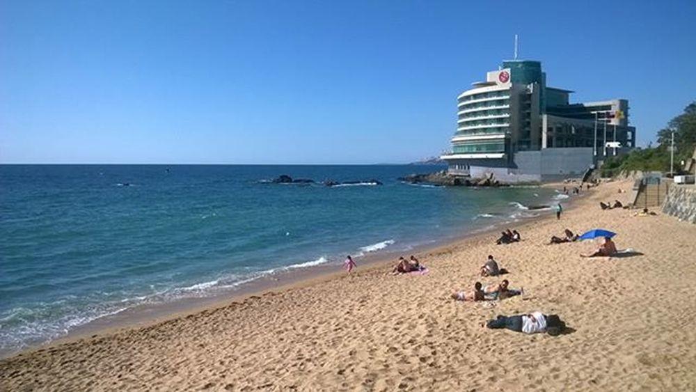 Sinfiltro Nofilter Beach Viña Playa