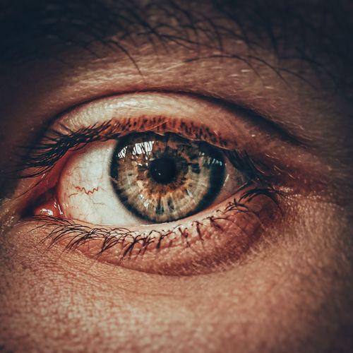The male eye