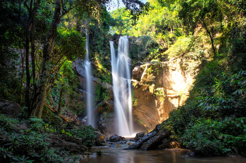 Waterfall around Pai Tree Water Forest Waterfall Plant Land Scenics - Nature Rock Motion Beauty In Nature Nature Long Exposure Flowing Water Rock - Object Environment Solid Rainforest Foliage Lush Foliage No People Flowing Outdoors WoodLand Tropical Rainforest Stream - Flowing Water