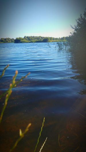 Water Lake Nature Outdoors No People Day Beauty In Nature Rostock 2017