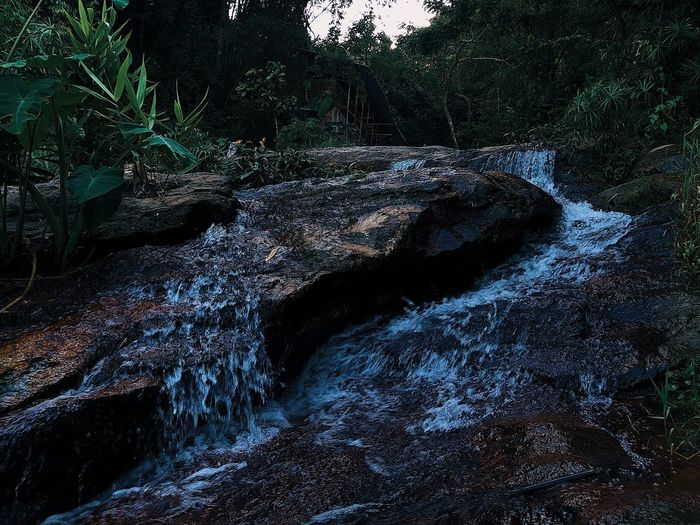 View of stream flowing through rocks in forest
