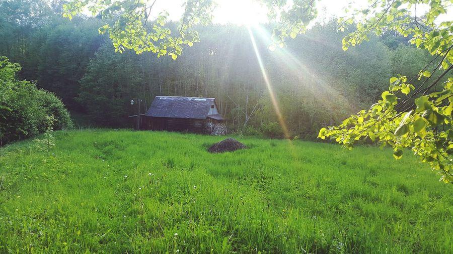 Home sweet home ❤ First Eyeem Photo Morning Naturelovers Nature Home Sweet Home Latvia Daugavpils