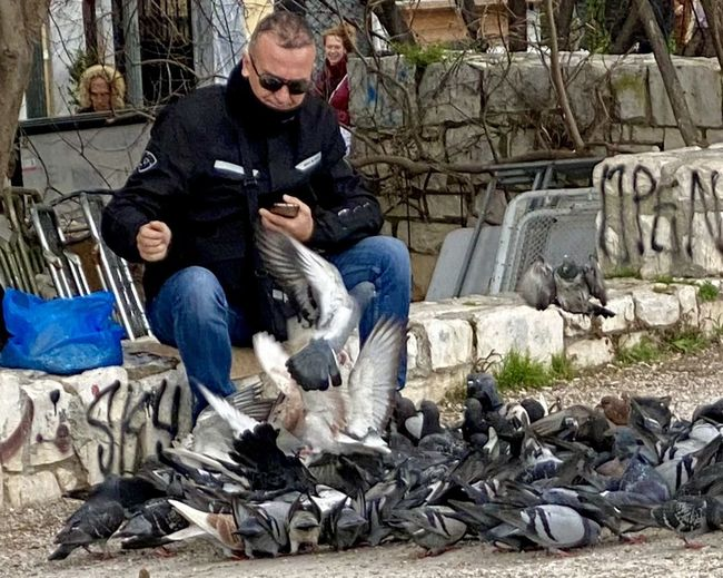 Full length of young man sitting by birds