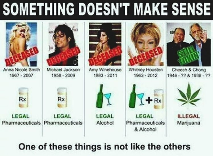 Legalize It! Peace ✌ Politics Alcohol And Other Nonsense MaryJane