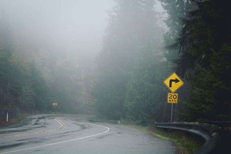 Road sign by trees during foggy weather