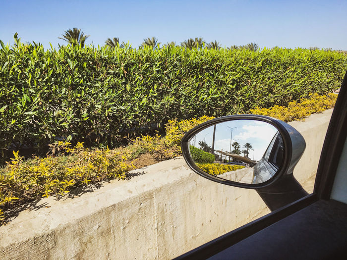 View of side-view mirror on road
