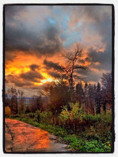 Nature Sky RainyDay