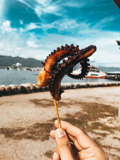 Close-up of hand holding street food grilled octopus stick on beach