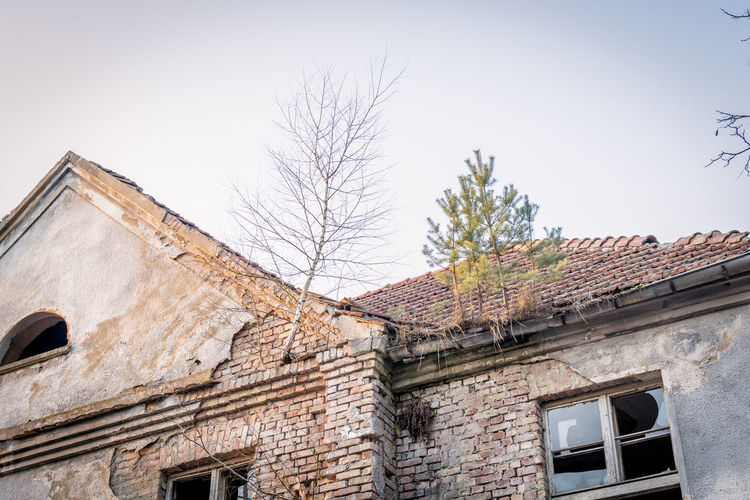 No People Day Abandoned Lostplaces Ruin Decay Forgotten Architecture Built Structure Building Exterior Low Angle View Building Sky Window Bare Tree Residential District House Roof Tree Old Nature Clear Sky Wall Brick Roof Tile