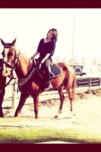 At binmek. En sevdiğim.