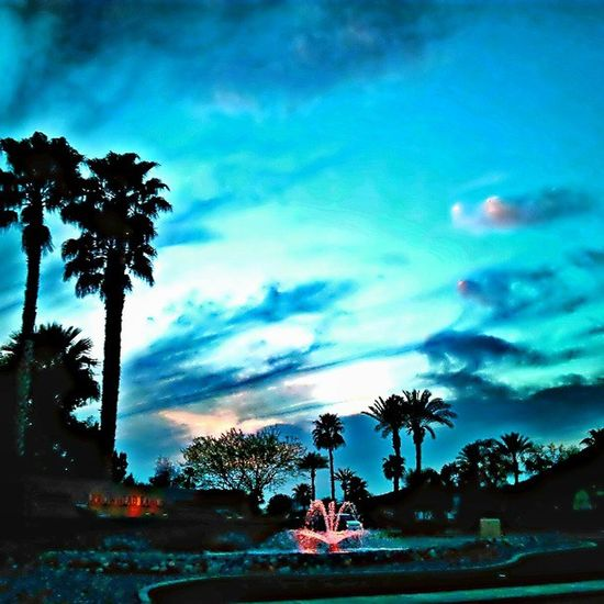 Instagramaz Instamood Glendaleaz Arrowhood Beautiful Waterfountain Palmtrees Relaxing Scenery Awesomesunsets @arizonaskies @sunsetsgram Sunsets Citylifeinaz Clouds Cloudporn Pretty PeacefulNight