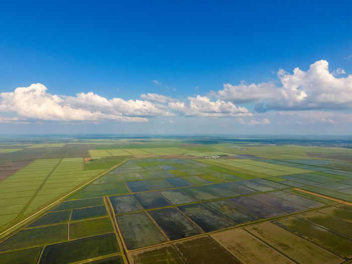 Agriculture Field Russia Agriculture Agro Agronomy Beauty In Nature Blue Cloud - Sky Day Environment Farm Field Horizon Kuban Land Landscape Nature No People Outdoors Paddy Field Patchwork Landscape Rise Rural Scene Scenics - Nature Sky Tranquil Scene Tranquility
