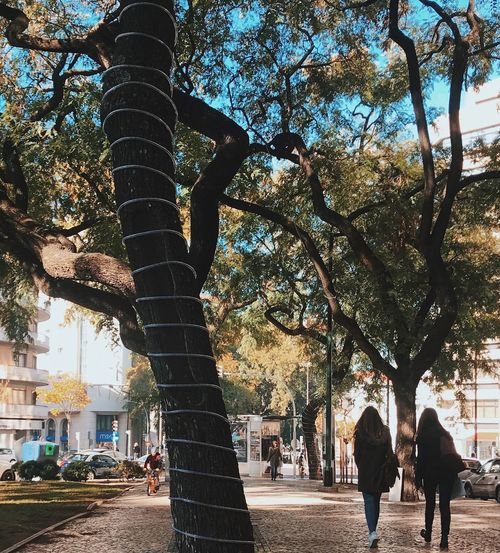 Tree Tree Trunk Walking Street City City Life Built Structure Architecture Outdoors Day People Women Building Exterior Branch Sky