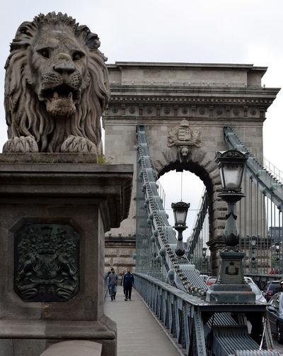 Architecture Bridge Bridge - Man Made Structure Budapest Capital Cities  City Hungary Tourism Travel Destinations