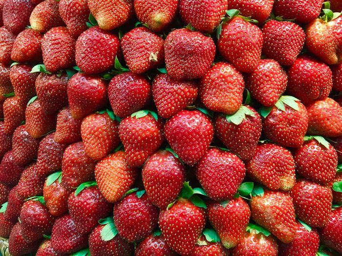 sweet strawberries Fragaria Strawberry Fruit Red Strawberries Red Fruits Sweet Strawberries Fruits Strawberries Plant Kingdom Plants Colour Of Life Color Palette Beautifully Organized