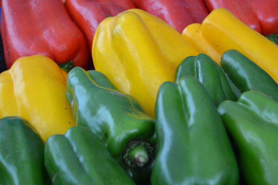 peppers EyeEmNewHere Multi Colored Gelatin Dessert Backgrounds Full Frame Yellow Close-up Green Color Food And Drink Green Bell Pepper Eggplant Pepper - Vegetable Paprika Chili Pepper Green Chili Pepper Bell Pepper Yellow Bell Pepper Red Bell Pepper Farmer Market