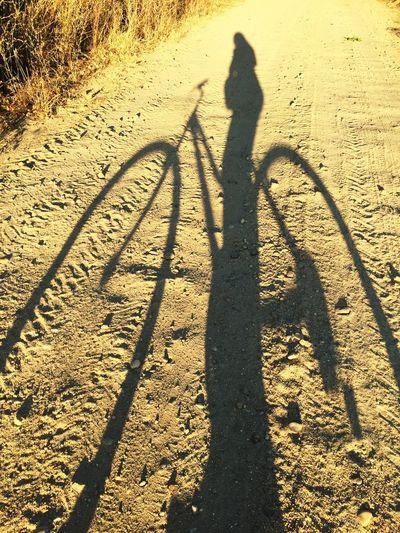 Golden moments , shadows and light , Bike Riding sandy roads Enjoying Life Taking Photos