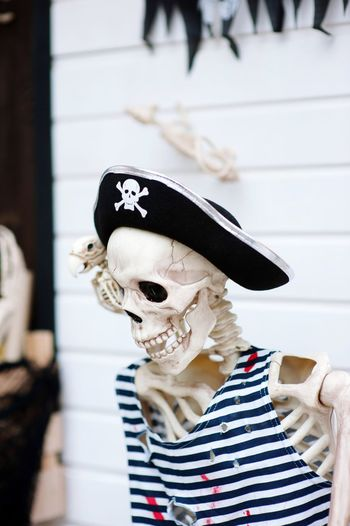 Skeleton with pirate hat