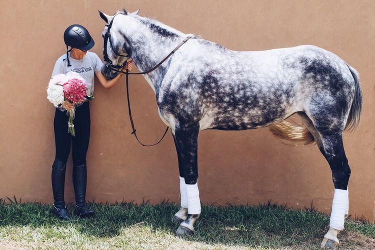 Full length of woman holding bouquet by horse against wall on field