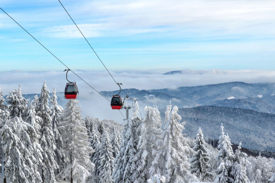 Gondola lift in a ski resort. Gondola ski lift on a background of a picturesque winter mountain. Alpine Cable Cloud - Sky Cold Temperature Europe Forest Gondola Landscape, Mountain Overhead Cable Car Passenger Peak Poland Recreation  Resort Scenics Ski Lift Skiers Sky Snow Tourist Travel Tree Vacation Winter