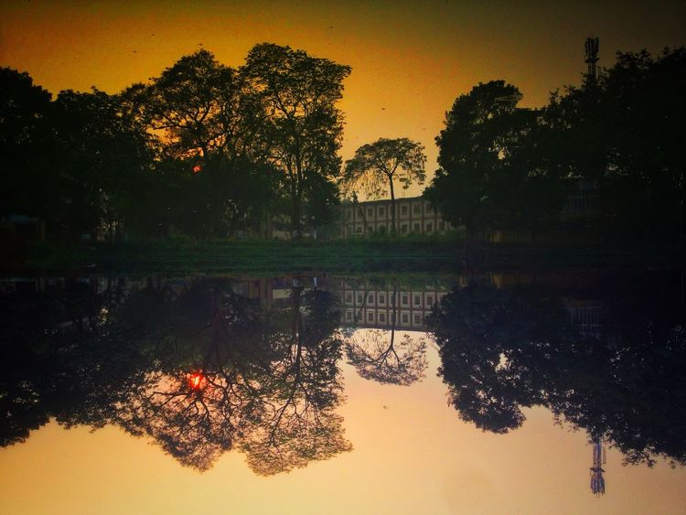 lets view the world upside down... Beauty In Nature Day Lake Nature No People Outdoors Reflection Scenics Shotonphone Silhouette Sky Sun Sunset Symmetry Tranquil Scene Tranquility Tree Water