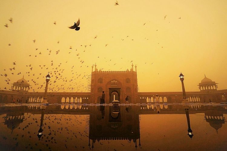 Paint The Town Yellow Gold EyeEm Best Shots EyeEm Gallery Incedible India Sunrise JamaMasjid
