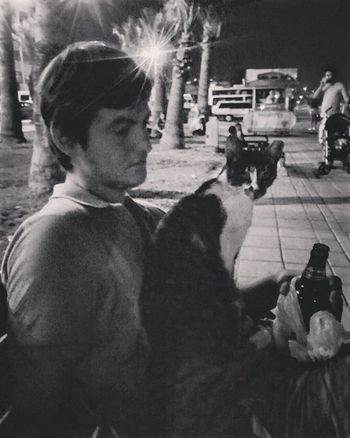 Huzur Alanya Cat Beer Kedi Bira Huzur Xyz Life