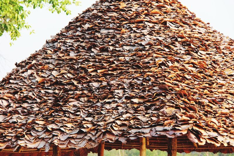 Dry Leaves Roof Like A Locals Thai Style Building Detail Close-up Cantryside in North Thailand South East Asia