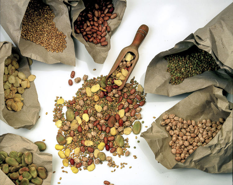 Beans Chickpeas Dried Beans Food Gastronomy Lentils Mixture Of Dried Vegetables Paper Recycled Soupe Wheat