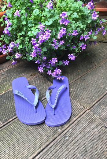 Ready for the summer Summer Flip Flops Flowering Plant Flower Plant Purple Nature High Angle View Shoe No People Day Pair Freshness Growth Pink Color Outdoors Still Life Absence Close-up The Still Life Photographer - 2018 EyeEm Awards